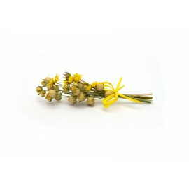 Žlutá kytička - 10 cm