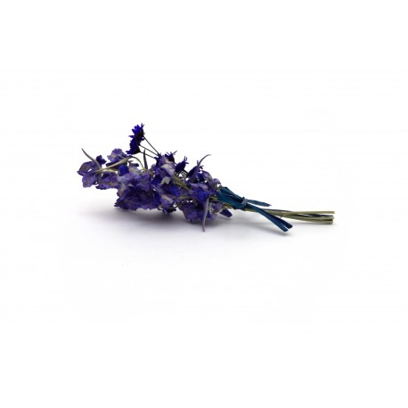 Modrá kytička - 10 cm