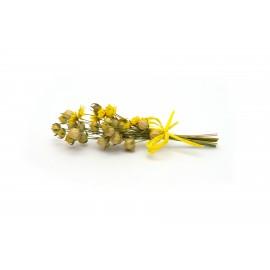 Žlutá kytička - 15 cm