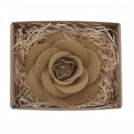 Přírodní medová růže