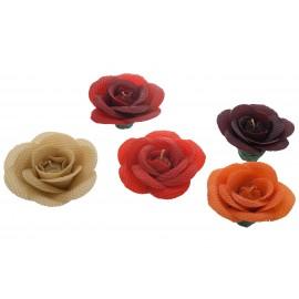 Medové růže